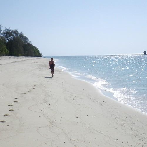 Zanzibar Misali1