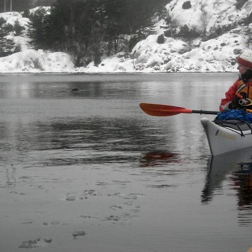 Vinterpaddling Lysekils Kommun